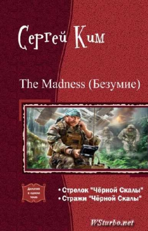 Ким Сергей - The madness (Безумие) (дилогия) (СИ)