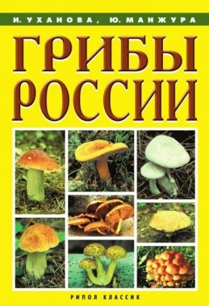 Уханова Ирина, Манжура Юрий - Грибы России