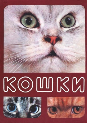 Непомнящий Николай - Кошки