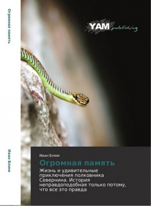 Северюхин Олег - Огромная память