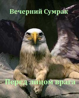 Сумрак Вечерний - Некромант. Книга третья. Перед лицом врага