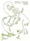 Каттнер Генри - Вся правда о золотой рыбке