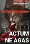 Ясинская Лика, Цыбин Дмитрий - Actum ne agas. Забыть прошлое